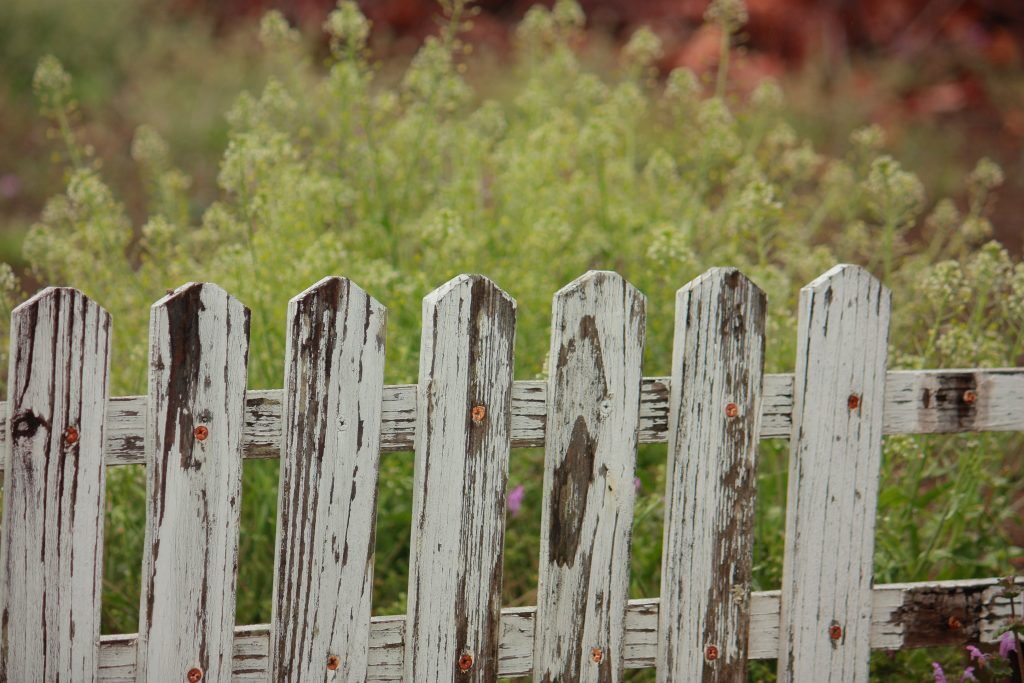 A picture of a fence with grass